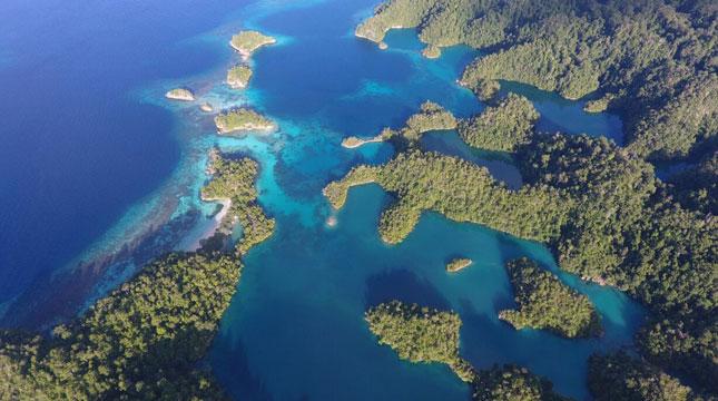 Halmahera Selatan, Spot Diving Terbaik di Provinsi Maluku Utara (Foto: Kepala Bidang Promosi Halmahera Selatan)