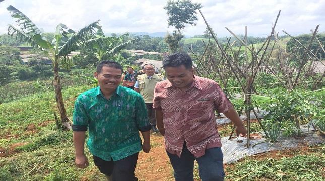 Dirjen Hortikultura Suwandi