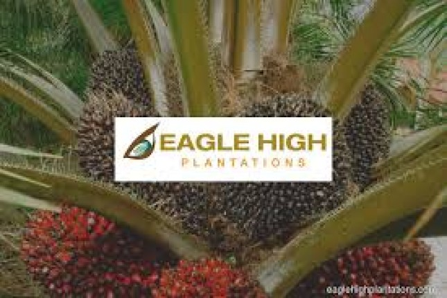 Eagle High Plantations