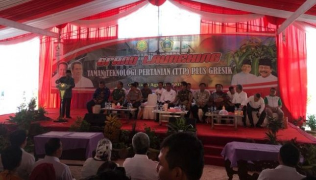 CEO PT Polowijo Gosari Group Achmad Djauhar Arifin, Rabu (8/8).
