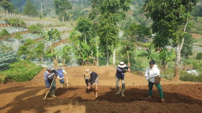 Petani Muda Siap Dorong Indonesia menjadi Lumbung Pangan Dunia