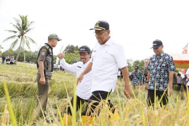 *Caption Foto : Wakil Bupati H. Slamet Seno Sentono, SH, didampingi Kepala BB Padi Dr. Priatna Sasmita