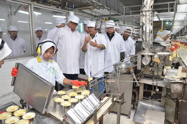 Menteri Perindustrian Airlangga Hartarto meninjau proses pengemasan nanas dalam kaleng di pabrik PT Great Giant Pinapple,Lampung (Foto: Kemenperin)