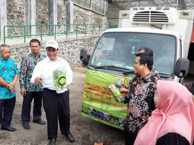 Mentan Amran Sulaiman saat melepas ekspor sayur mayur ke luar negeri