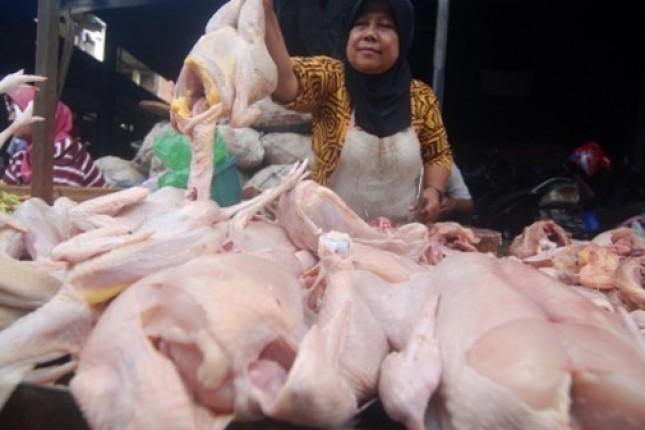 Penjual Ayam Potong di Pasar