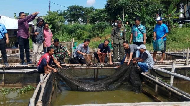 Indah Kiat Tangerang Bantu Masyarakat Sekitar Tingkatkan Kualitas Budidaya Ikan Lele