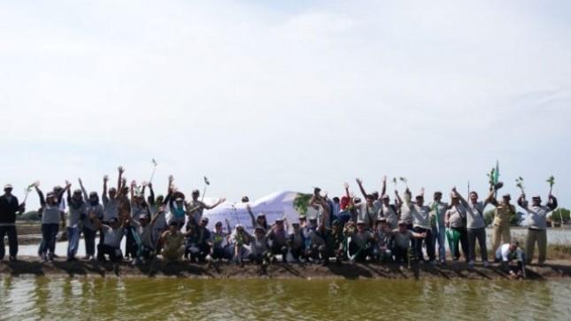 Jababeka Ajak Para Tenantnya Tanam Pohon Mangrove di Pesisir Pantai Bekasi