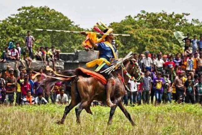 Parade 1001 Kuda Sandelwood NTT (Foto Ist)