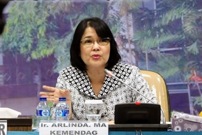 Direktur Jenderal Pengembangan Ekspor Nasional (PEN) Kemendag, Arlinda (Foto Antaranews)