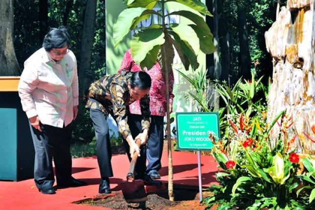 Presiden Jokowi Minta Ada Trobosan Pengelolaan Hutan (Foto Setkab)
