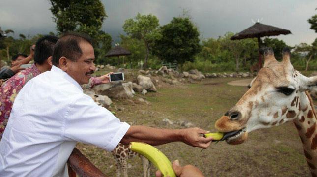 Menteri Pariwisata, Arief Yahya Meresmikan Baobab Resort di Taman Safari II Prigen, Pasuruan