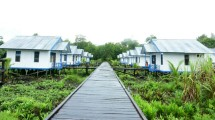 Pembangunan Rumah swadaya di Asmat