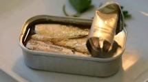 Ilustrasi ikan kaleng