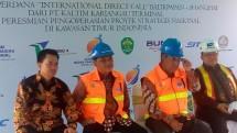 Tekan Biaya Logistik Lebih Dari 50 Persen, Menteri Rini Dukung Program Direct Call Pelindo IV (Foto Dok Industry.coid)