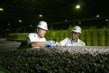 ANTAM memperkembangkan proyek hilirasi perusahaan berjalan on track. (Dok Industry.co.id)