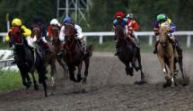 Olahraga Berkuda (Foto Dok Industry.co.id)