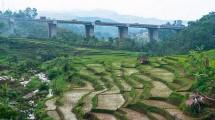 Jembatan Cisomang. (Onny Carr/Moment Open)