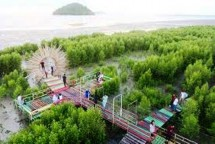 Mempawah Mangrove Park Daerah Tujuan Wisata Kalbar (Foto Dok Industry.co.id)