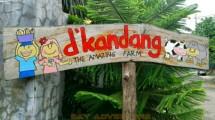 D Kandang (skyadventure)