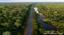 Jalan Perbatasan Papua