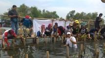 Jababeka Infrastruktur - PT NSMI Lakukan Penanaman 1000 Pohon Mangrove di PPI Paljaya Bekasi