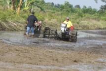Petani sedang membajak lahan persawahan