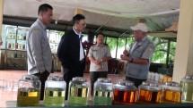Sekjen Kementan Syukur Iwantoro saat meninjau tanaman industri dan penyegar.