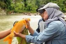 Bupati Lebak Iti Octavia Jayabaya (Foto Dok Bantennews)