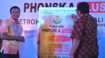 PT Petrokimia Gresik genjot produk NPK Phonska Plus.