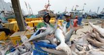 Ilustrasi penangkapan ikan. (Dimas Ardian/Bloomberg/Getty Images)