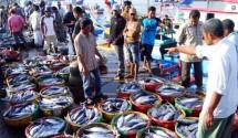Ikan-Ikan yang berasal dari perairan Nusantara siap diolah jadi makanan lezat dan bergizi