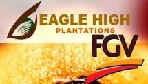 PT Eagle High Plantations Tbk (BWTP)