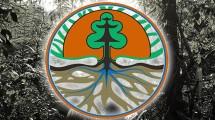 Kementerian Lingkungan Hidup dan Kehutanan (LHK)