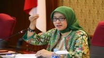Deputi Kelembagaan dan Tata Laksana Kementerian PANRB Rini Widyantini. (Foto Anto/Industry.co.id)