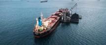 PT Pelita Samudera Shipping Tbk ,