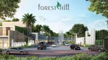 Forest Hill (Foto Dok Industry.co.id)
