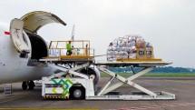 CKB Logistics Tambah Jadwal Pengiriman Kargo Pasar IBT