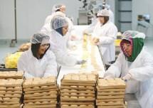 Ilustrasi industri manufaktur sektor makanan (ist)