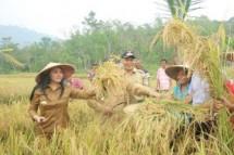 Bupati Landak Karolin Margret Natasa kiri bersama petani panen padi