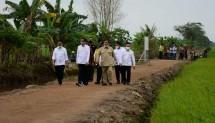 Presiden Jokowi Tinjau Lahan Food Estate Kalteng