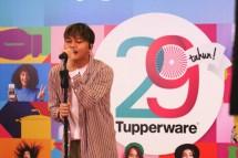 29 Tahun Tupperware