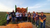 Petani jagung yang siap mengekspor ke luar negeri