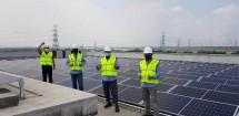 Fonterra Memanfaatkan Tenaga Surya untuk Pabrik Indonesia