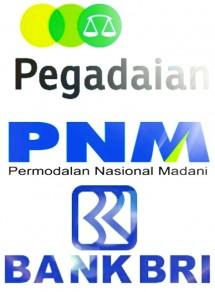 Holding BUMN Pegadaian, PMN dan BRI